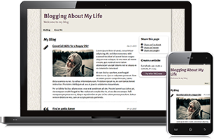 My life website example
